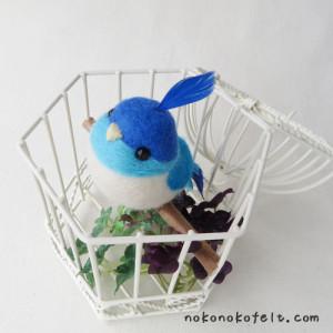 幸せの青い鳥 のこのこ まんまることり